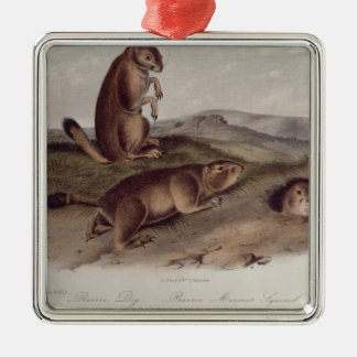 Prairie Dog from 'Quadrupeds of North America' Metal Ornament
