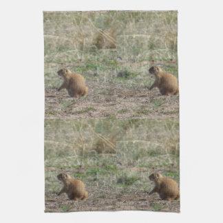 Prairie Dog Kitchen Towels