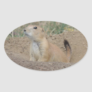 Prairie Dog Oval Sticker