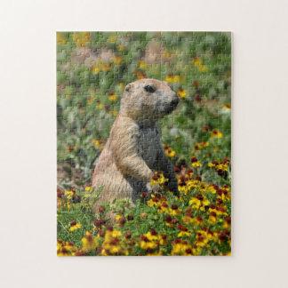 Prairie Dog Puzzles