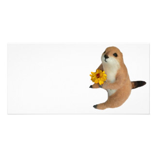 prairie dog s stuffed toy photo card template