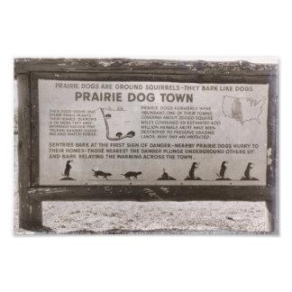 Prairie Dog Town South Dakota Wind Cave Retro Photo Print