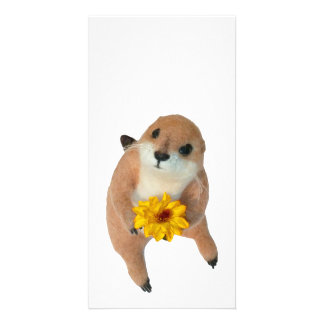 prairie dog's stuffed toy photo card template