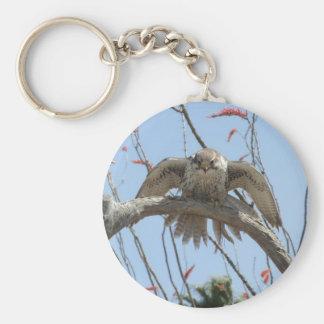 Prairie Falcon Basic Round Button Key Ring