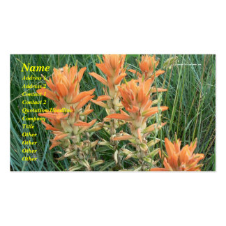 Prairie Fire Pack Of Standard Business Cards