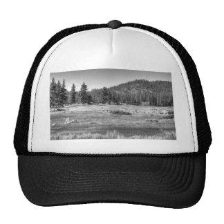 Prairie In South Lake Tahoe Trucker Hats