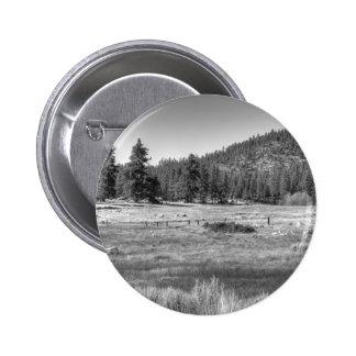 Prairie In South Lake Tahoe Pins
