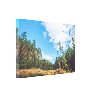 Prairie landscape with pine trees on canvas canvas print
