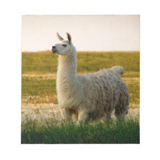 Prairie Llama Mama Notepad