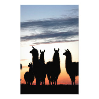 Prairie Llama silhouette Stationery Design