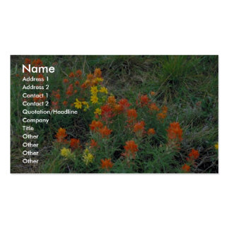 Prairie Paintbrush Business Card