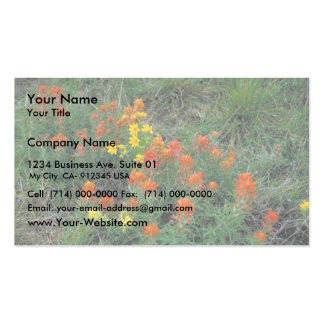 Prairie Paintbrush Business Card Template