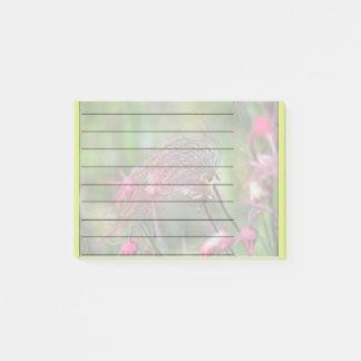 Prairie Smoke Flower Post-it Notes
