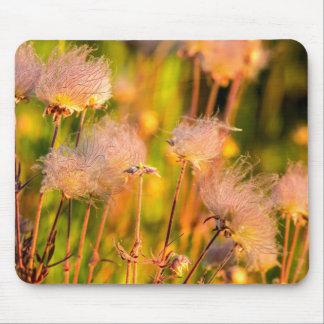 Prairie Smoke Wildflowers In Aspen Grove Mouse Pad