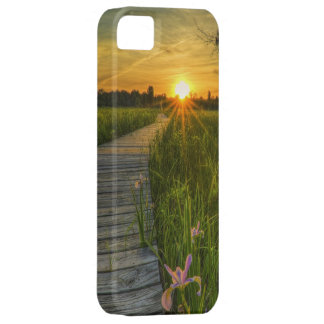 Prairie Sunset Barely There iPhone 5 Case