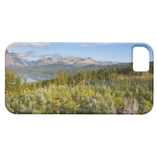Prairie wildflowers and Lower Two Medicine Lake Case For The iPhone 5