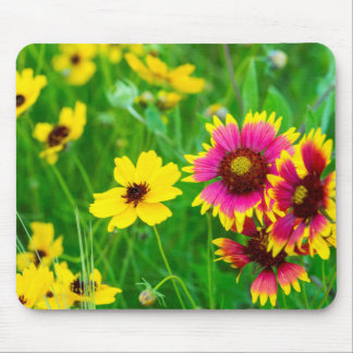 Prairie wildflowers in Hill Country Mousepads