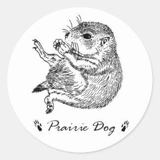 prairiedog sketch sketch of prairie dog round sticker
