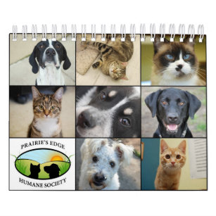 Black Cat Rescue  Wall Calendar