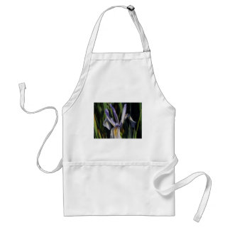 Praise the Lord ! Aprons