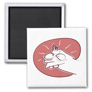 prankish kid funny cartoon magnet