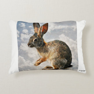 Praying Bunny in the Heavens Accent Pillow