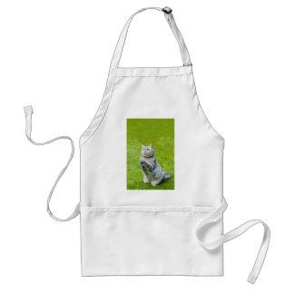 Praying cat on green grass standard apron