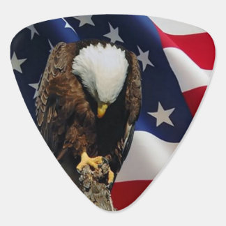 Praying Eagle American Flag sad red white blue Plectrum