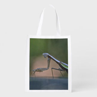 Praying Mantis All Purpose Bag