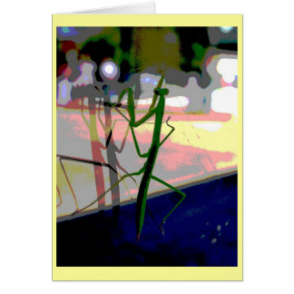 Praying Mantis Card