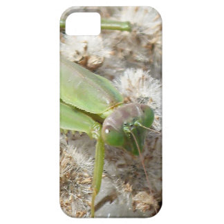 praying mantis case for the iPhone 5