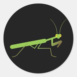 Cricket Insect Stickers Zazzle Au