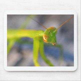 Praying Mantis Mouse Pads