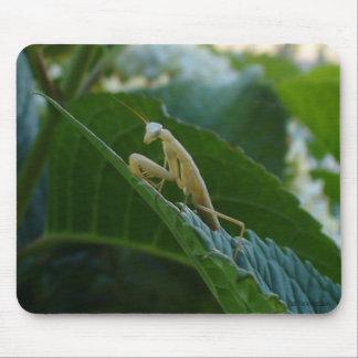 Praying Mantis Mousepad Mouse Pad