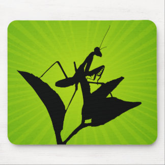 Praying Mantis On A Twig With A Starburst Mouse Pad