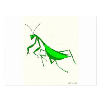 Praying Mantis Products Postcard