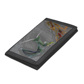 Praying Mantis Wallet 1