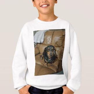 Precious Dachshund Sweatshirt