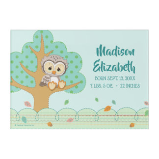 Precious Moments | Woodland Owl Always Love You Acrylic Print