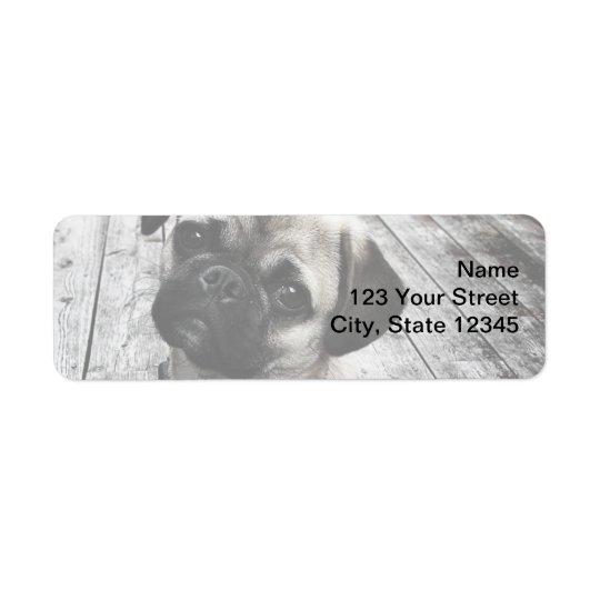 Precious Pug Puppy in Black and White Return Address Label