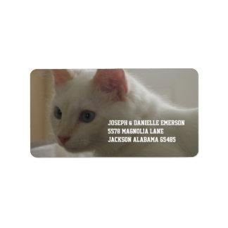 Precious White Kitty Address Label