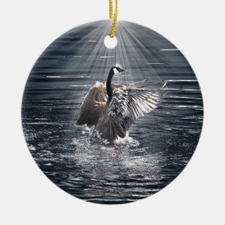Preening, Flapping Canada Goose Photo Ceramic Ornament