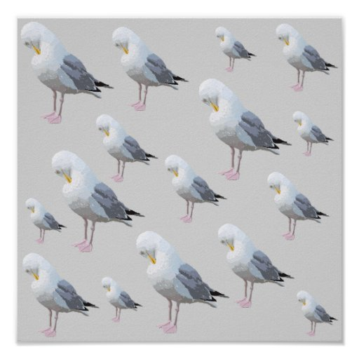 Preening Gull Pattern on Gray. Posters