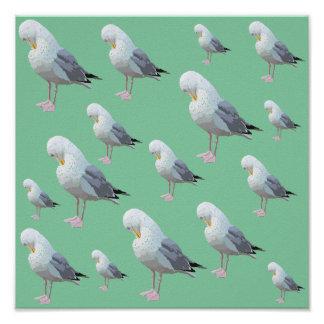 Preening Gull Pattern, Sketched Style on Green. Poster