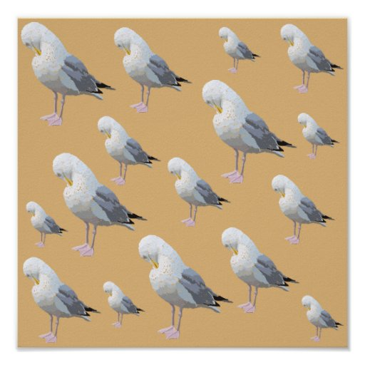 Preening Gull Pattern, Sketched Style on Tan. Posters