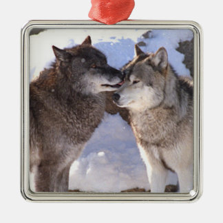 "Premium Square Ornament ""Alpha Kiss"""