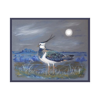 Premium wrapped canvas 20x16 Peewit Lapwing