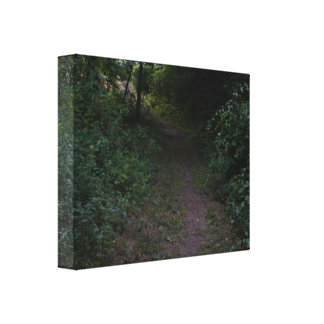 Premium Wrapped Canvas (Gloss) PHOTOGRAPH OF WOODE