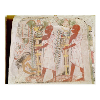 Preparation two mummies for purification ceremony postcard