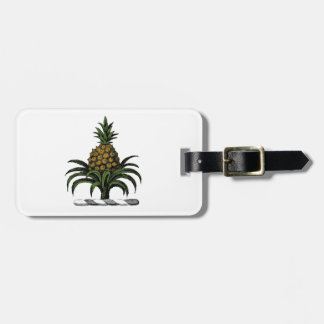 Preppy Heraldic Pineapple Crest Color WT Luggage Tag